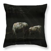 Longhorns Reflections At The Pond Throw Pillow