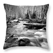 Longmire Stream 5bw Throw Pillow