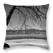 Longs Peak Geese Bw Throw Pillow