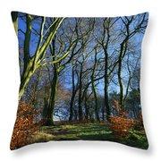 Longshaw Woods Throw Pillow
