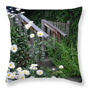 Look After The Daisies Throw Pillow