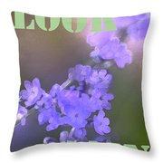 Look Again Throw Pillow