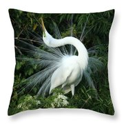 Look At Me Throw Pillow by Sabrina L Ryan