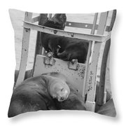 Look At The One In The Middle Black And White Throw Pillow