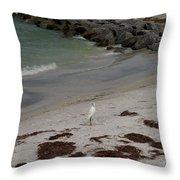 Look Back Bird Throw Pillow
