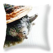 Look Both Ways When Crossing  Throw Pillow