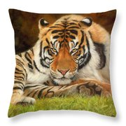 Look Into My Eyes Throw Pillow