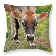 Look Into My Eyes - Jersey Cow - Square Throw Pillow
