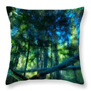 Look Into The Reflection Throw Pillow