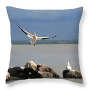 Look Ma - I Can Fly Throw Pillow