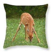 Look Of Innocence Throw Pillow