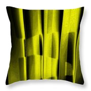 Look Of The Cat Throw Pillow