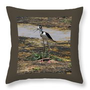 Look Out For That Egret- Mother Stilt Said Throw Pillow