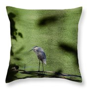 Look Through The Trees Throw Pillow