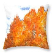 Look To The Heavens Throw Pillow