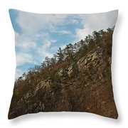 Look Up Throw Pillow