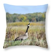 Look Up There Throw Pillow