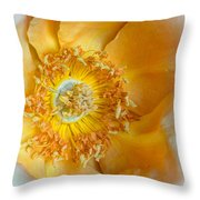 Look Within Throw Pillow