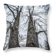 Looking At Tree Tops After A Winter Snow Storm Throw Pillow