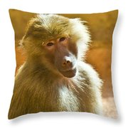 Looking At You. Throw Pillow