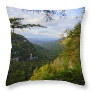 Looking Down The Canyon Throw Pillow