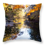 Looking Down The Eno River Throw Pillow