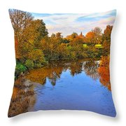 Looking Down The River Throw Pillow