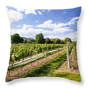 Looking Down The Vines Throw Pillow
