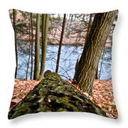 Looking Downhill Throw Pillow