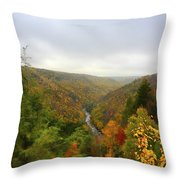 Looking Downstream At Blackwater River Gorge In Fall Throw Pillow by Dan Friend