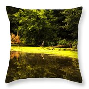 Looking For Breakfast Throw Pillow