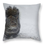 Looking For Food. Throw Pillow