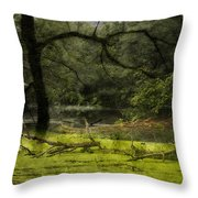 Looking For Food Merged Image Throw Pillow