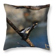 Looking For Food Throw Pillow
