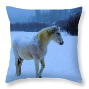 Looking For Hay Throw Pillow