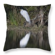 Looking For Lunch Throw Pillow