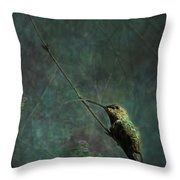 Looking For Monet 1 Throw Pillow