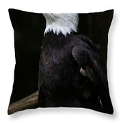 Looking For Strength Throw Pillow by Athena Mckinzie