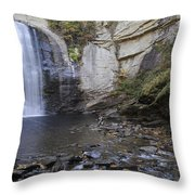 Looking Glass Falls With Trout Fishing - North Carolina Waterfalls Series Throw Pillow