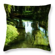 Looking Green And Serene Throw Pillow