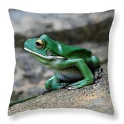 Looking Green Throw Pillow