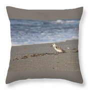 Looking In All The Wrong Places Throw Pillow