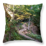 Looking Into Devil's Punch Bowl Wildcat Den Throw Pillow
