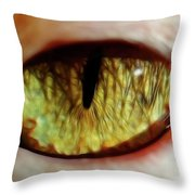 Looking Into The Soul Throw Pillow