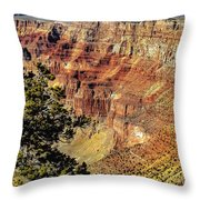 Looking Into The South Rim Throw Pillow