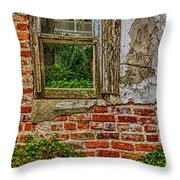 Looking Out At Darien Throw Pillow