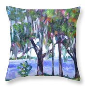 Looking Out On The Bay Throw Pillow