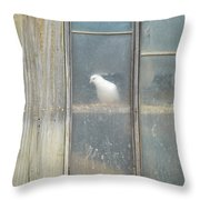 Looking Out The Coop Throw Pillow