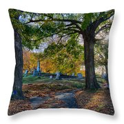 Looking Over The Hill Throw Pillow