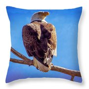 Looking Right Throw Pillow by Bob Hislop